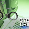 2 held for 'cyber crime'
