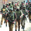 Forces Launch Search Operation In North Kashmir's  Sopore Village