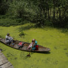 If this is the pathetic plight of back waters of famed Dal Lake which gets all the attention and whose health…