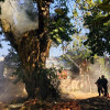Fire damages septuagenarian Chinar tree in Budgam