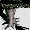 Stephen King Reviews Tana French's 'Extraordinary' New Novel