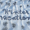 Questioning 'winter vacations' for higher classes