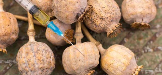 26 kg poppy seized, 2 held