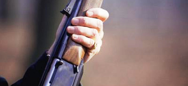 Unknown persons snatch service rifle of cop deployed for MLA's visit in Kupwara