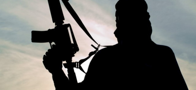 SPO runs away with the rifle, joins Hizb-ul-Mujahideen: Hizb