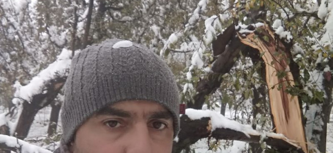 Early snowfall – boon or bane