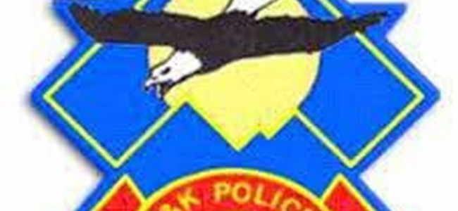 Police busts gang of car lifters