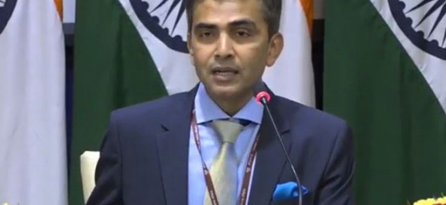 CAA internal matter of India, will continue to remain engaged with European Parliament members: MEA