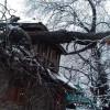 Narrow escape for Doda family as tree falls on house