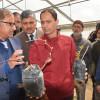 Horticulture dept organises plantation drive