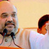 Will scrap Article 370 once BJP gets majority in Parliament: Shah