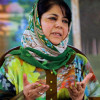 Mehbooba concedes defeat from Anantnag