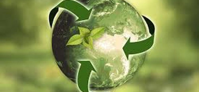 Green Computing For Environment Sustainability!
