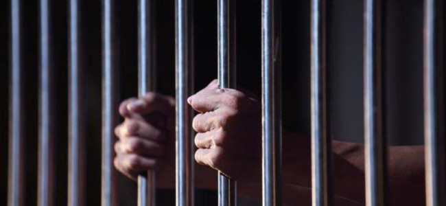 8,189 Indian prisoners lodged in foreign jails: MEA